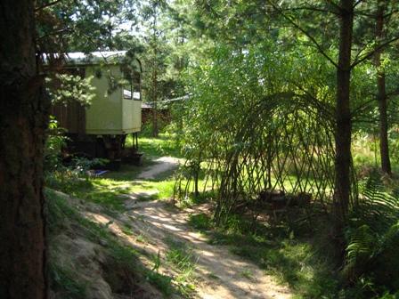 Zwischen Bäumen ist die Rückseite eines Bauwagens und eine Weidenkuppel zu sehen